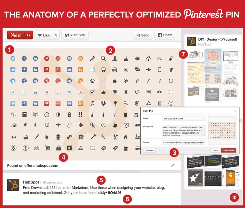 anatomia pin pinterest perfetto