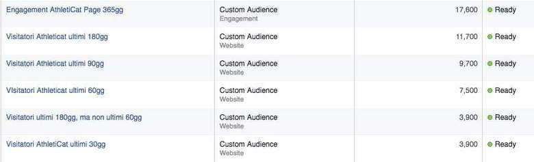 custom audience FB