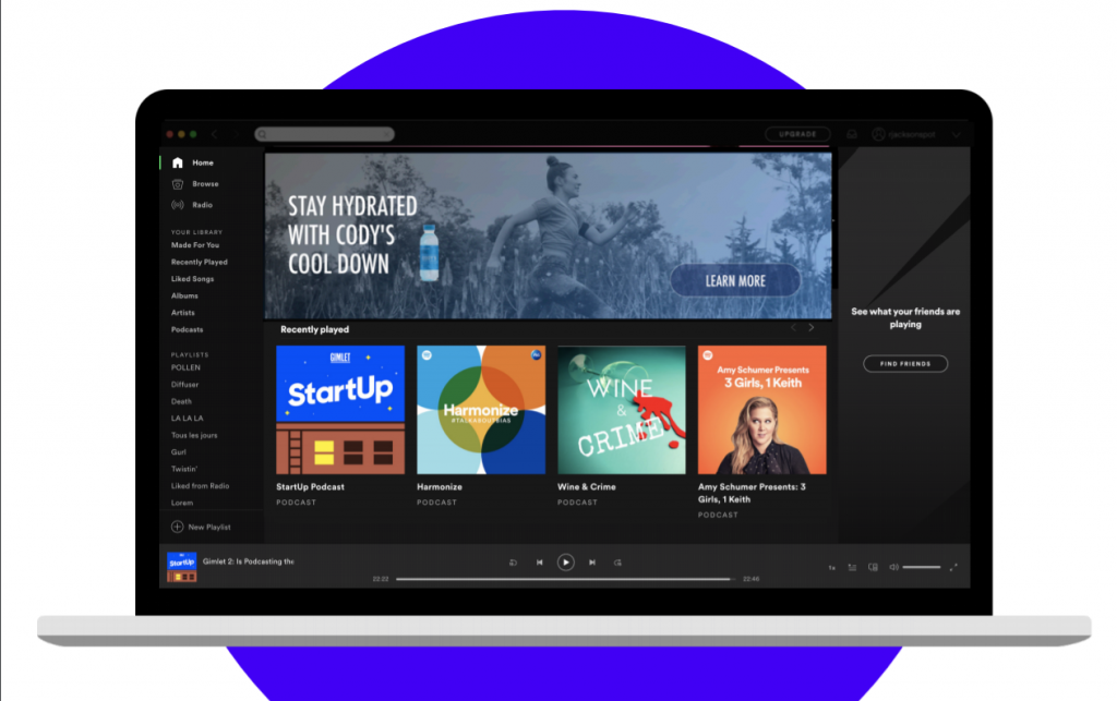 Spotify Advertising Homepage Takeover