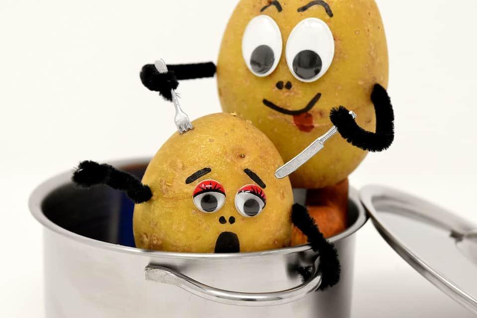 cannibalizzazione-delle-keyword-patata-che-cucina-altra-patata
